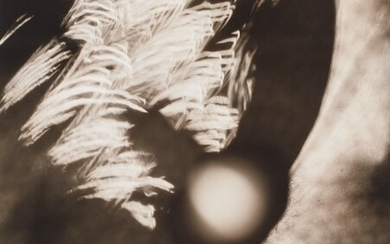 Edward Quigley, Impact – Light Abstraction