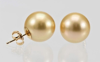 x14mm Round Golden South Sea Pearls - 14 kt. Yellow