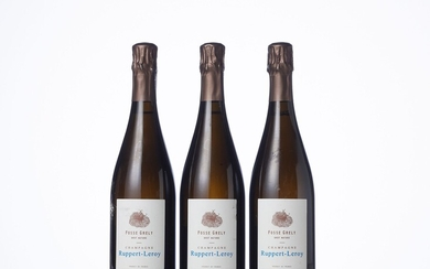 """3 Bouteilles CHAMPAGNE BRUT NATURE """"FOSSE GRELY"""" Année : 2017 Appellation : Ruppert-Leroy Remarques :..."""