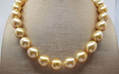 Large 12x13mm South Sea Pearls Gold - Necklace