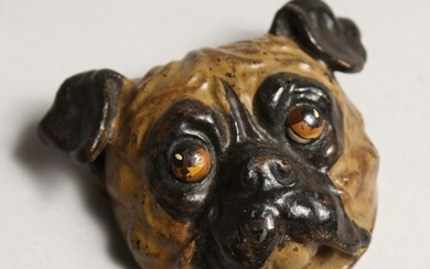A COLD PAINTED BRONZE PUG DOG HOLDER 2.5ins