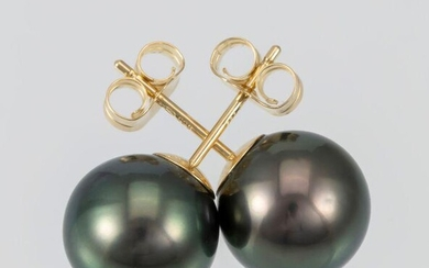 10x11mm Peacock Tahitian Pearls - 14 kt. Yellow gold