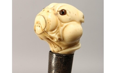 A 19TH CENTURY CARVED IVORY BULLDOG HANDLE WALKING CANE with...