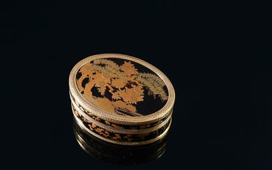 LARGE JAPANESE LACQUER SNUFFBOX, SALLOT PIERRE-GUILLAUME, PARIS, 1781. Of oval shape, the hinged lid is decorated with a lacquered panel with a black background and gold highlights representing a Japanese kaki tree and a pine tree on the edge of a...