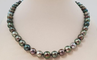 9x11mm Round Multi Coloured Tahitian pearls - Necklace