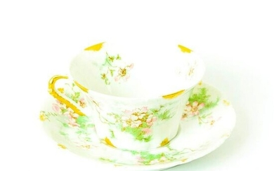 Limoges, Theodore Haviland, Cup and Saucer