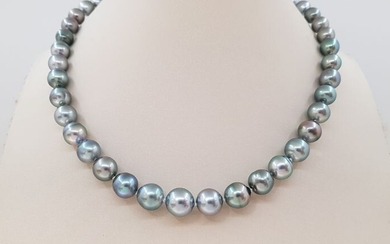 United Pearl - 8x11mm Silvery Green Tahitian Pearls - 14 kt. White gold - Necklace