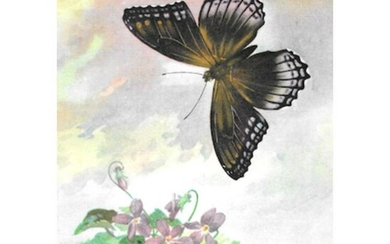 1920's Red-Spotted Purple Butterfly Color Lithograph