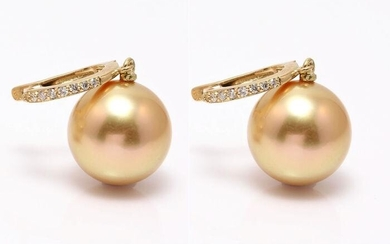 11x12mm Round Golden South Sea Pearls - 14 kt. Yellow