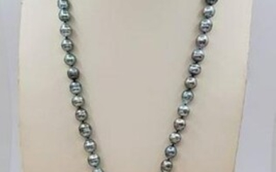 8x10 Shimmering Peacock grey Tahitian pearls - Necklace