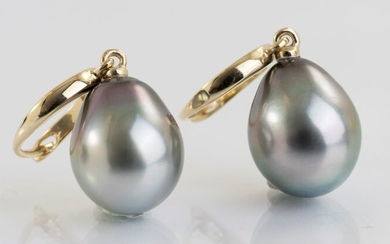 NO RESERVE PRICE - 10x11mm Tahitian Pearl Drops - 14 kt. Yellow gold - Earrings