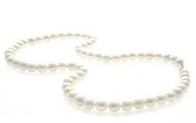 South Sea Cultured Pearl, 18k Yellow Gold Necklace