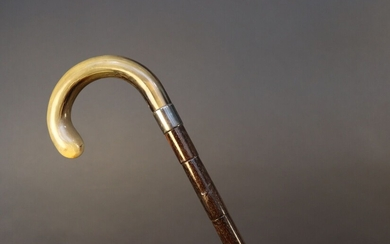 Defence cane with a curved horn pommel releasing a soft baton