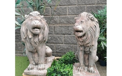 Good quality pair of moulded stone seated Lions {90 cm H x 4...