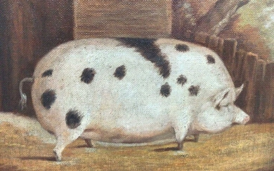J. Box, oil on canvas laid on board - A Black Spot Prize Pig in a Sty, signed, 20cm x 25cm, framed