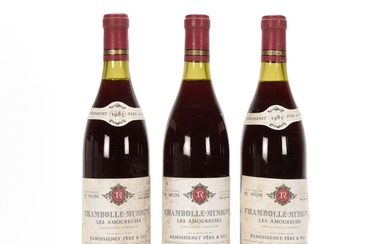 3 B CHAMBOLLE-MUSIGNY LES AMOUREUSES (1er...