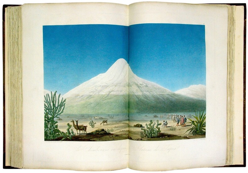 """Humboldt, Alexander Von, and Aimé Bonpland   """"The most beautiful and generally interesting of all Humboldt's works"""""""