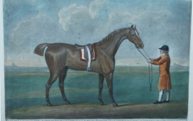 Various Artists, British 19th century- Jockeys with Horses; four etchings in colours on wove, to include an After George Stubbs, each published by Laurie & Whittle, London, each image 25 x 25cm (framed) (4)