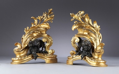 A pair of Rococo chenets with lions in gilt and patinated bronze, France c. 1760 (2)