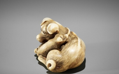 A SUPERB IVORY NETSUKE OF A FEMALE DOG WITH YOUNG, ATTRIBUTED TO OKATOMO