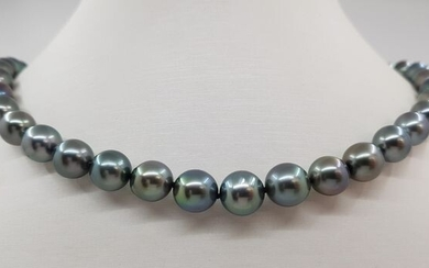 NO RESERVE - 8.2x10.2mm Peacock Tahitian Pearls - 14 kt. Yellow gold - Necklace