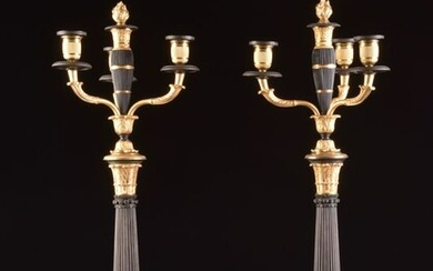 Pair of large two-tone candlesticks on beautiful lion legs and double function (2) - Charles X - Bronze (patinated), Ormolu - Early 19th century