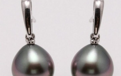 14 kt. White Gold - 10x11mm Peacock Tahitian Pearl