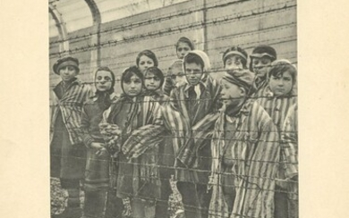 The liberation of the Auschwitz camp - a rare photo album