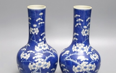 A pair of 19th century Chinese blue and white porcelain prun...