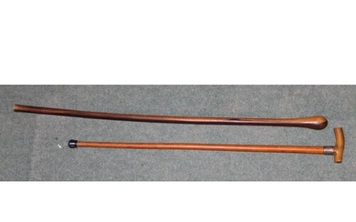 Malacca walking stick with horn handle and silver collar L86...
