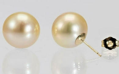 13mm Golden South Sea Pearls - 14 kt. Yellow gold