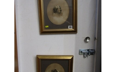 DOG PORTRAITS, pair of heightened Victorian drawings of dogs...