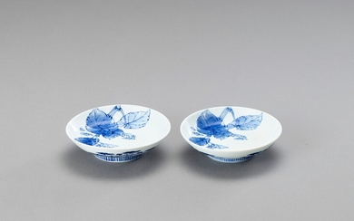 A FINE PAIR OF CIRCULAR BLUE AND WHITE PORCELAIN DISHES