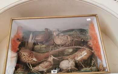 Taxidermy pheasant, woodcock, rabbit and mouse mounted in a ...