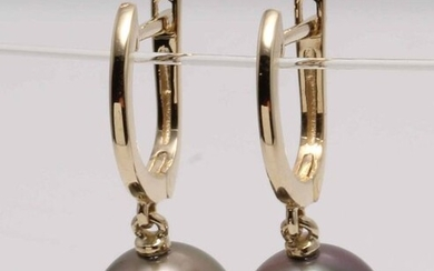 NO RESERVE PRICE - 10x11mm Round Tahitian Pearls - 14 kt. Yellow gold - Earrings