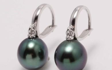 NO RESERVE PRICE - 10x11mm Tahitian Pearl Drops - 14 kt. White gold - Earrings