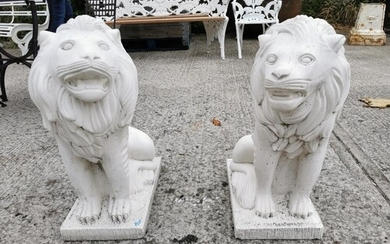 Pair of moulded stone seated Lions {65 cm H x 29 cm W x 55 c...