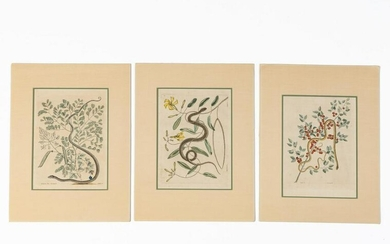 3 PCS, MARK CATESBY SNAKE HAND COLORED ENGRAVINGS