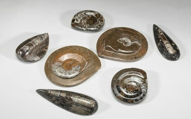 Group of Collectible Fossil Table Sculptures