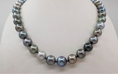 United Pearl - 8.5x12mm Multi Coloured Tahitian Pearls - 14 kt. White gold - Necklace