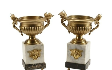 Pair of Empire Style Dore Bronze Urns on Marble Bases.