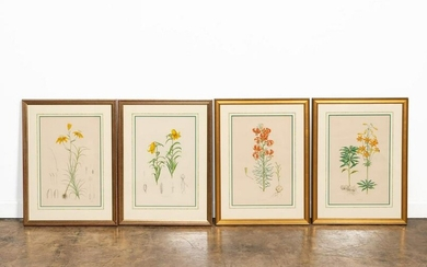 4 PIECES, ELWES LILY ENGRAVINGS, FRAMED, 1880