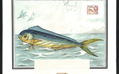 c.1953 Coloured print of a Dolphin Fish with a reproduction ...