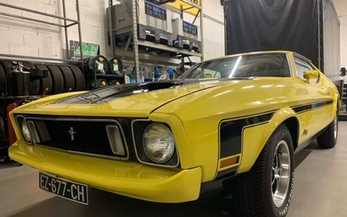 Ford USA - Mustang Mach1 - 1973