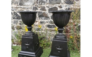 Pair of good quality cast iron urns on pedestals in the Geor...