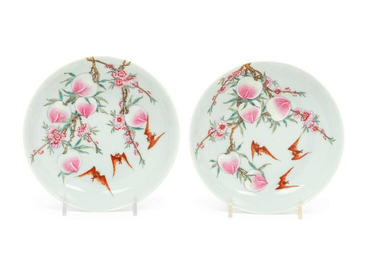 A Pair of Chinese Famille Rose Porcelain 'Bats and