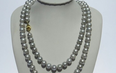 14 kt. Yellow gold - Necklace - 7.5-8.5mm Silvery Light Grey Akoya Pearls, Extra Long Necklace