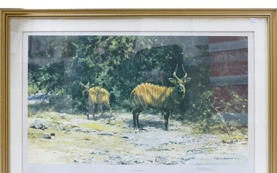 David Shepherd artist signed limited edition print African A...