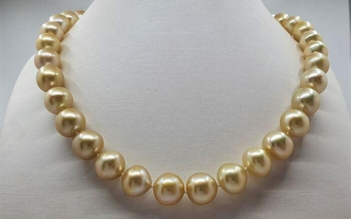 10.5x12mm Deep Golden South Sea Pearls - Necklace