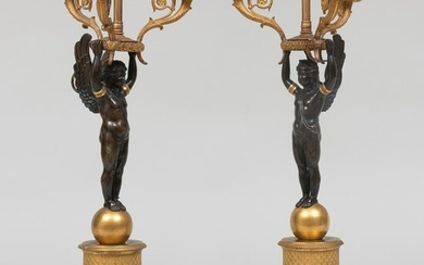 Pair of Empire Style Gilt and Patinated Bronze